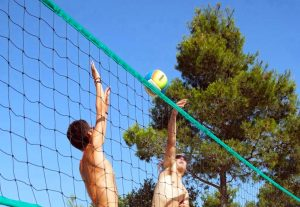 img-coq-rouge-volley